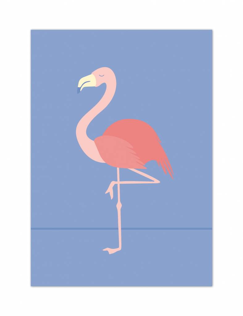 Poster - Flamingo - Tropical birds