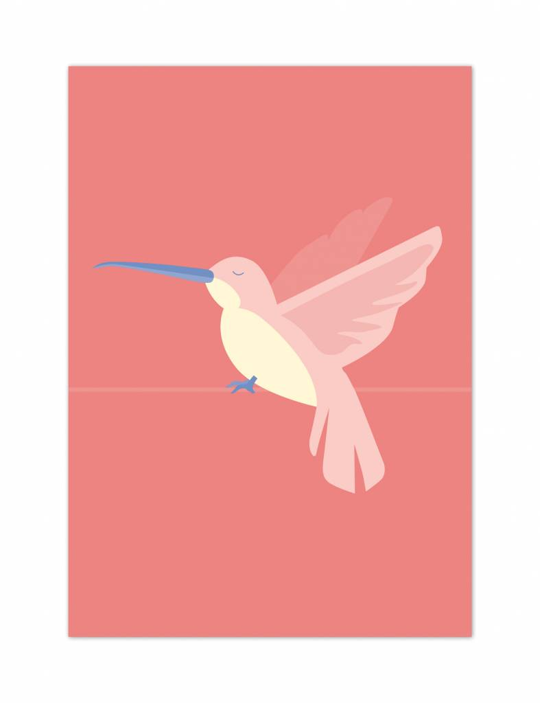 Poster - Kolibrie - Tropical birds