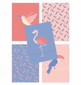 Wenskaartenset Tropical birds