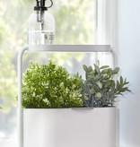 Witte plantenpot 'Giardino' van Umbra