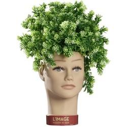 L'Image Kopf des Pflanzers