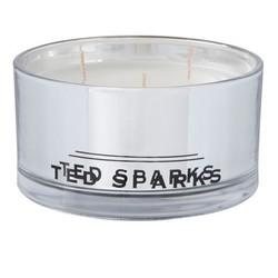 Ted Sparks Magnétion de Colletion Métallique