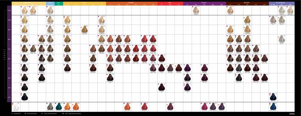 Balmain extensions colour chart
