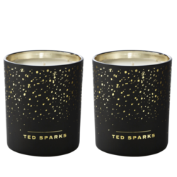 Ted Sparks Cinnamon and Spice Demi Duo Pack