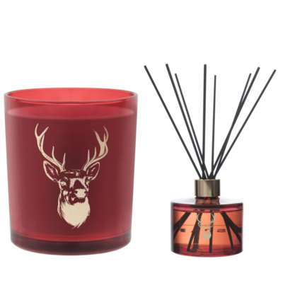 Ted Sparks Cinnamon and Sandalwood Diffuser & Geurkaars Combi Pack