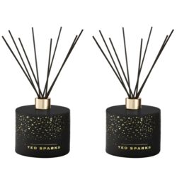 Ted Sparks Cinnamon and Spice Diffuser 2 Stuks