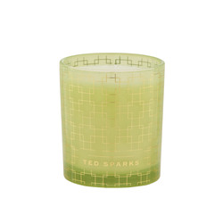 Ted Sparks Ylang-Ylang & Bamboo Demi Scented Candle