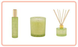 Ted Sparks Ylang-Ylang y bambú