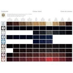 RefectoCil Tableau des couleurs