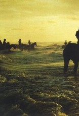 HARDWERK FOGELTJE Foals - Holy fire