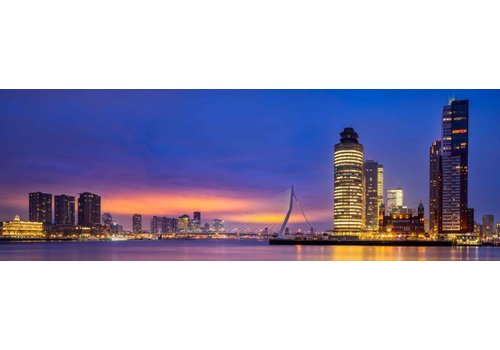 Vincent Fennis Rotterdam Connected | Rotterdam skyline