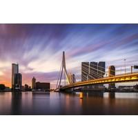 Rotterdam Strokes of Sunlight | Rotterdam skyline