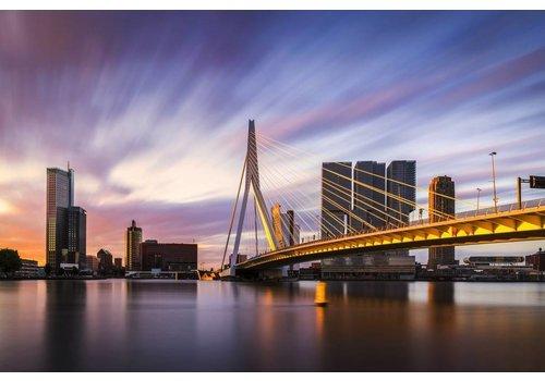 Vincent Fennis Rotterdam Strokes of Sunlight | Rotterdam skyline