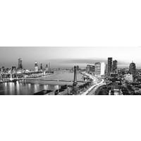 Rotterdam bridges blackandwhite