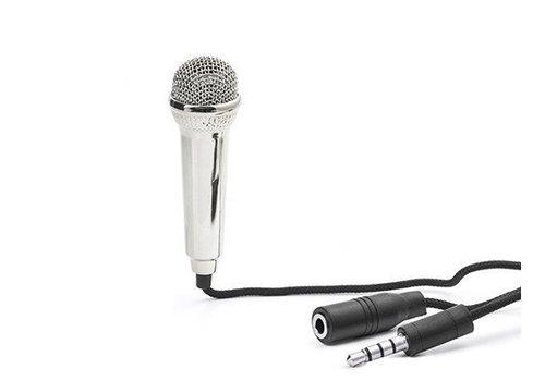Kikkerland Mini karaoke microfoon