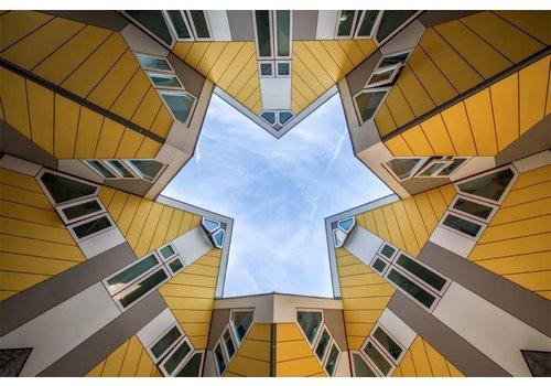 Steven Dijkshoorn Cubic star