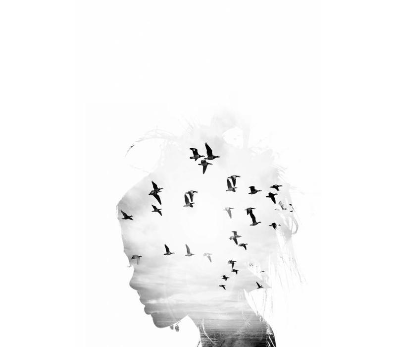 Birds dream 50x70