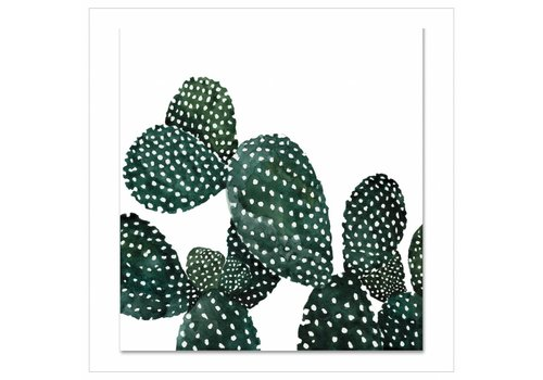 Leo La Douce Artprint 30x30 - Cactus Family