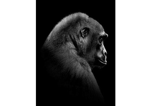 cre8design Gorilla 50x70