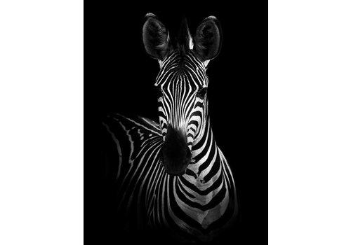 cre8design Zebra 50x70