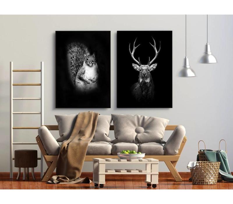 Eekhoorn 50x70