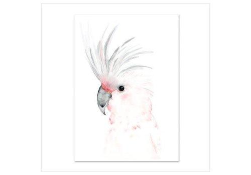 Leo La Douce Artprint A3 - Kakadu
