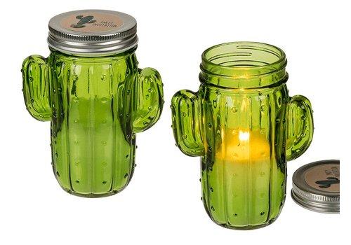 Cactus glas met kaars