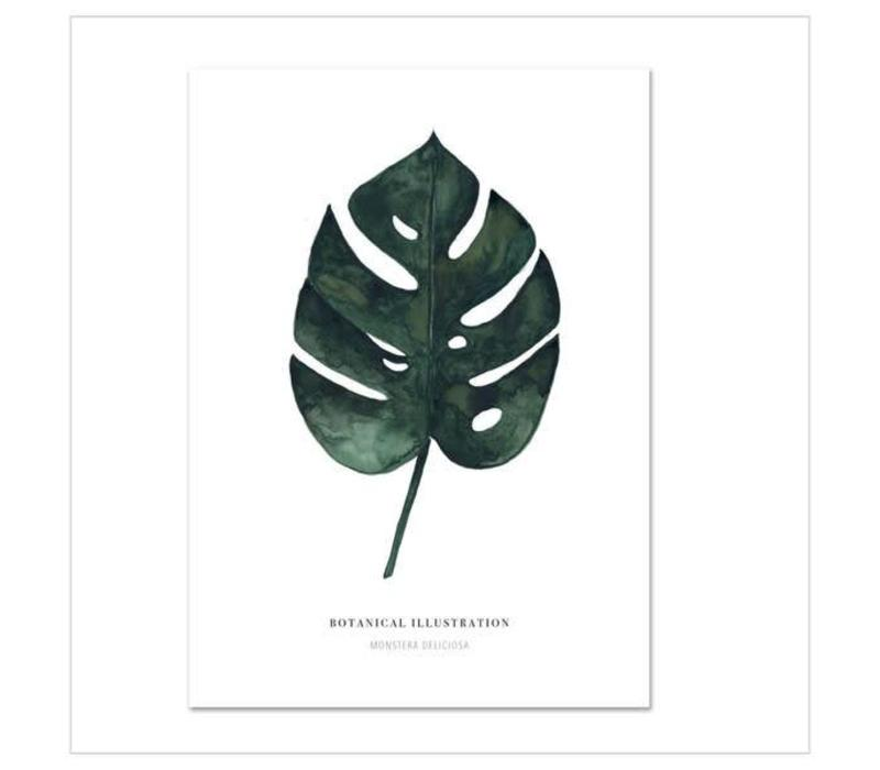 Artprint A3 - monstera deliciosa