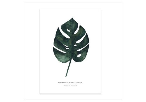 Leo La Douce Artprint A4 - monstera deliciosa