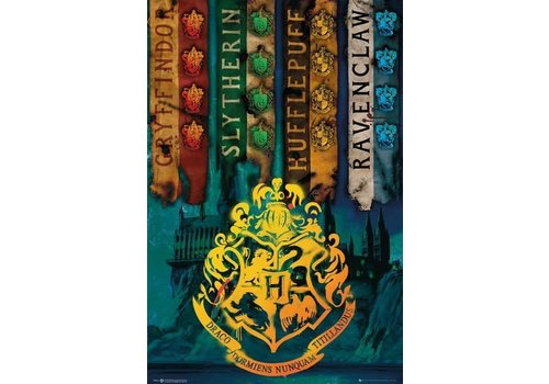 Poster 22 |  HARRY POTTER HOUSE FLAGS
