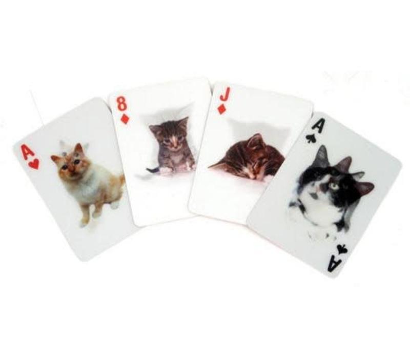 3D speelkaarten-katten