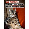 See this cat... it doesn't give a fuck about your birthday