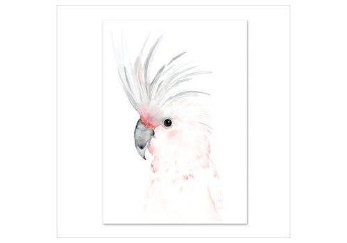 Leo La Douce Artprint A4 - Kakadu