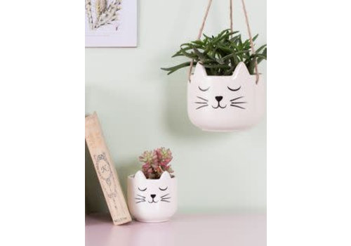 Sass & Belle Cat's whiskers hanging planter