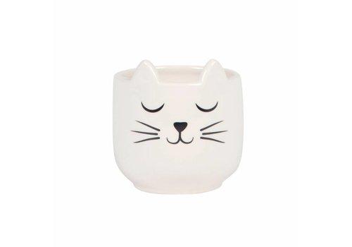 Sass & Belle Cat's whiskers mini planter