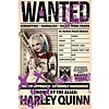 Poster |  suicide squad harley wanted