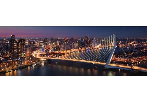 Vincent Fennis Metropolis Panorama | Rotterdam skyline