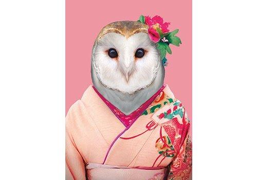 Klang und Kleid Barn Owl