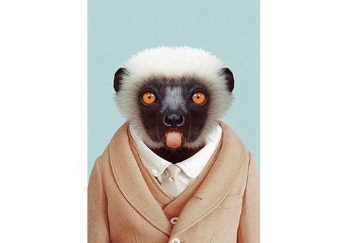 Klang und Kleid Lemur