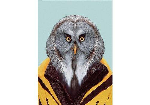 Klang und Kleid Great Grey Owl