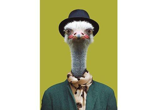 Klang und Kleid Ostrich 2