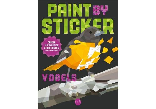 BBNC Paint by stickers vogels