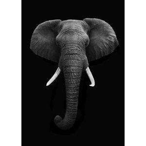 cre8design Black elephant A4