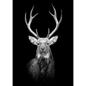 cre8design Black deer A4