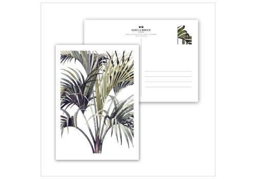 Leo La Douce Wild Palm