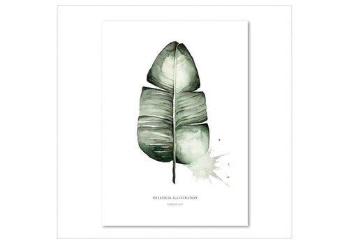 Leo La Douce Banana Leaf