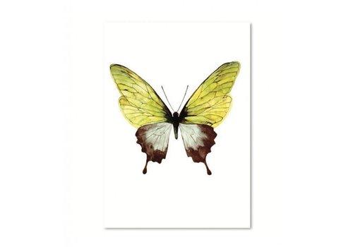 Leo La Douce Green butterfly