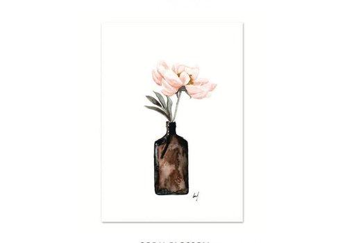 Leo La Douce Coral Blossom