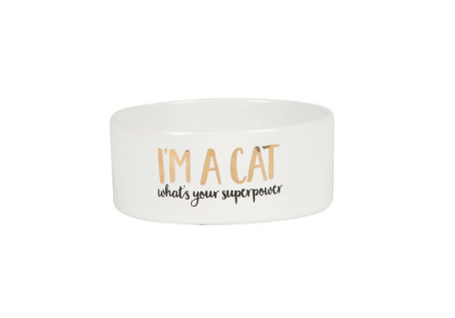Sass & Belle Bowl I'm a cat, what is your superpower?