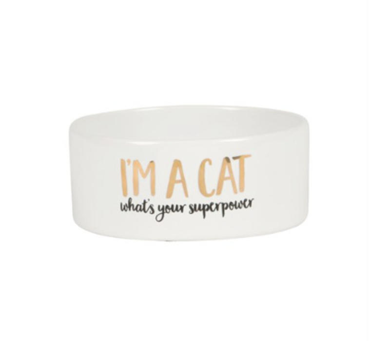 Bowl I'm a cat, what is your superpower?